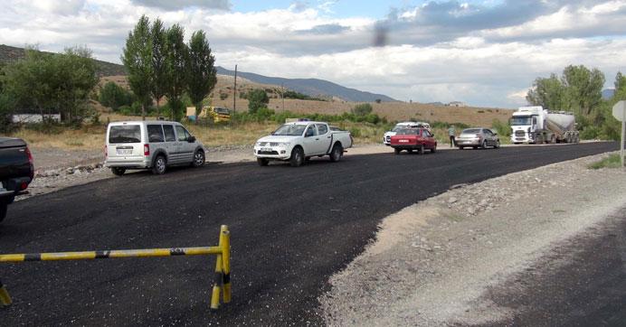 Yol kesen PKK'lılar kamyon şoförünü öldürdü